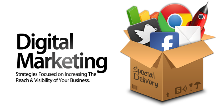 Professional Digital Marketing Service