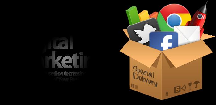 Professional Digital MarketingService